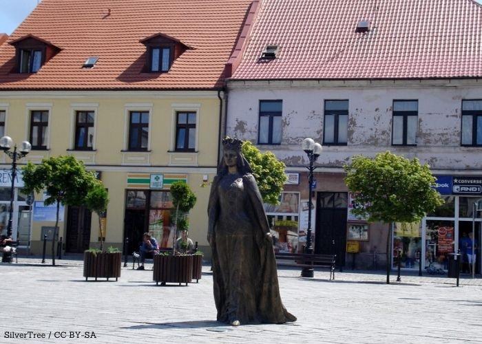 Powiat Inowrocław: Obrady powiatowe w Wiśle